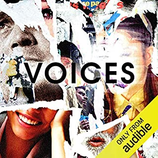 Voices                   By:                                                                                                                                 David Waters                           Length: 1 hr and 40 mins     14 ratings     Overall 4.1
