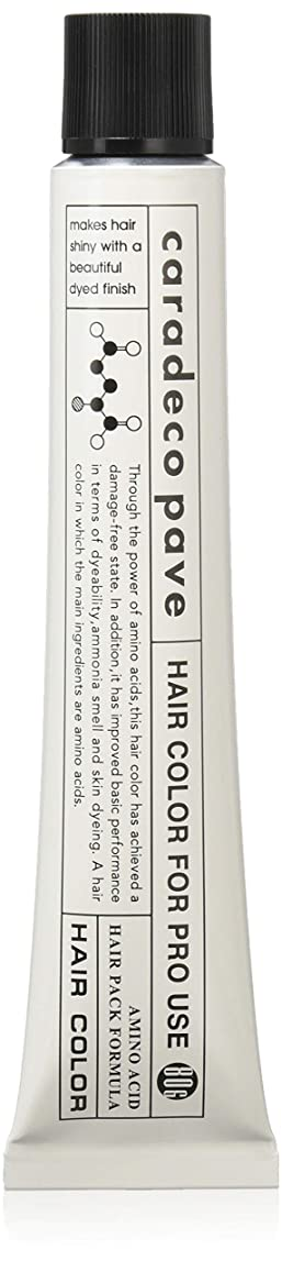 集団水銀の顕著中野製薬 パブェ アッシュBr 9p 80