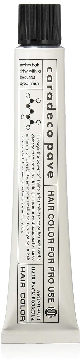 通常バリー教育する中野製薬 パブェ アッシュBr 9p 80
