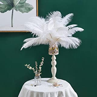 10pcs Real Natural Ostrich Feathers Great Decorations for Home Party Wedding Centerpieces (White, 14-16 inches (35-40cm))