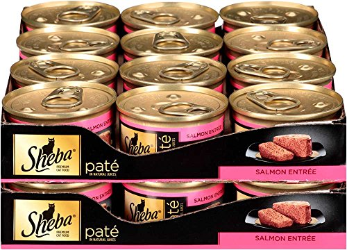 Sheba Pate In Natural Juices Salmon Entrée Canned Cat Food 3 Ounces (Pack Of 24)