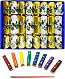 Crackers Musical Christmas Crackers with Mini Xylophones - Winter Birds design