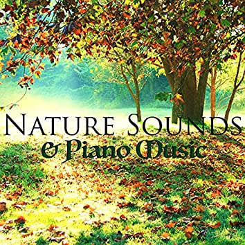 Nature Sounds & Piano Music - Relaxing Meditation Music with Sound of Nature