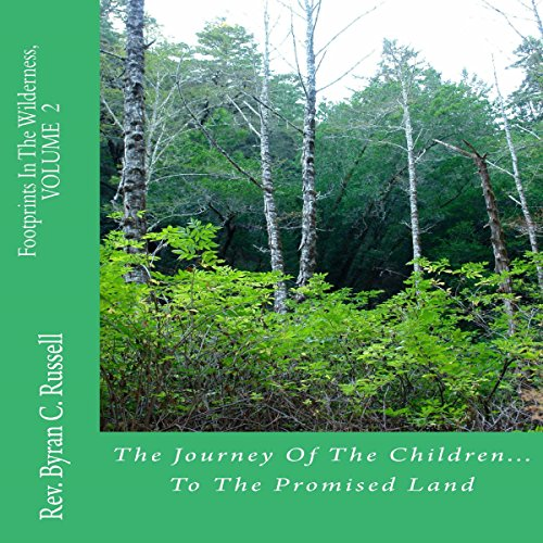 The Journey of the Children...to the Promised Land cover art