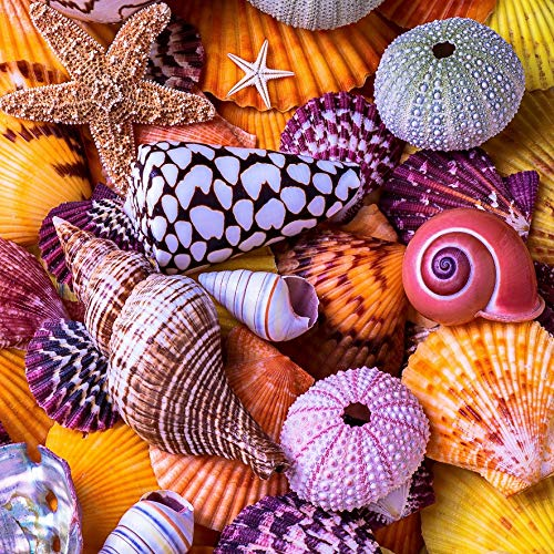 Wooden Jigsaw Puzzles for Adults - Ocean Treasures by Garry Gay - 145 Pieces by Nautilus Puzzles. Made in USA.