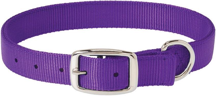 Weaver Dog Collar