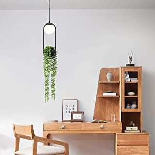 Hanging Planter for Window, Indoor Herb Garden Nordic Plant Chandelier Flower Pot Aisle Restaurant Beautiful Sky LED Lamp Wall and Ceiling Holder Ceiling for Live Great Live Plants Rusilay