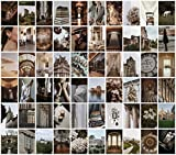 Cerise Design Photo Wall Collage - Dark Academia Photo Collage Kit for Wall Aesthetic, 60 set 4x6 inch, Victorian, Neutral, Beige, Light Academia Aesthetic Room Decor
