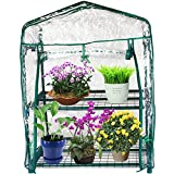 Kendal Garden Mini Greenhouse (2 Tier)