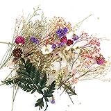 Yamer Vela de Resina para Manualidades con Flores Secas, Hecha a Mano, para Hacer Aromaterapia (Color Aleatorio)
