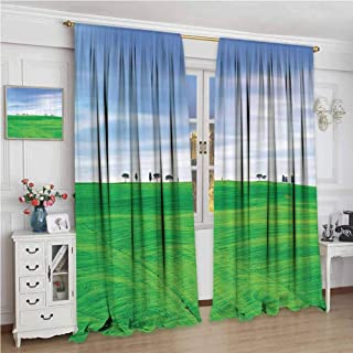 Room Decorations Collection Shading Insulated Curtain Tuscany Country Cypress Trees and Fields Crop Rural Area San Quirico Orcia Italy Image Soundproof Shade W96 x L72 Inch Green