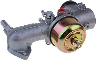 Tubayia - Carburador para cortacésped Briggs & Stratton Motorserie 191700 192700 193700