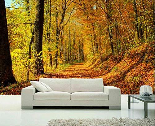 3D fotobehang wandafbeelding wandafbeeldingen herfstbos woonkamer TV sofa achtergrond behang moderne wooncultuur 250 x 175 cm