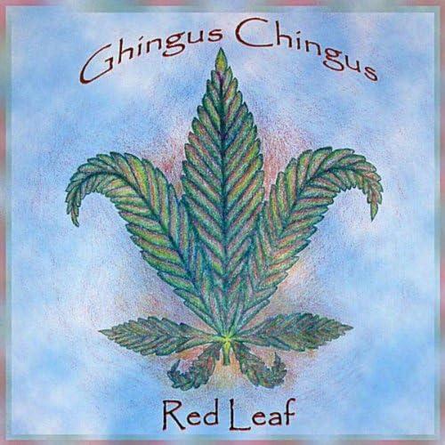 Ghingus Chingus
