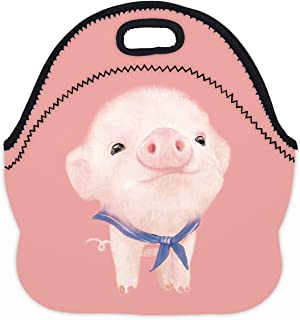 MOSDELU Boys Girls Lovely Pink Pig Lunch Bag Insulated Lunch Tote Bento Bag Lunchbox Handbags Outdoor Travel Picnic Carry Case
