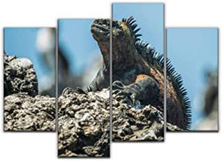 4 Panel marine iguana in isabela island endangered marine animalss and Canvas Pictures Home Decor Gifts Canvas Wall Art fo...