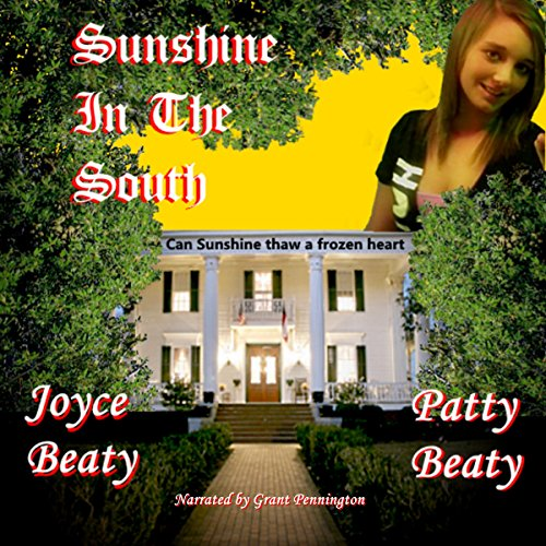Sunshine in the South, Volume 1 audiobook cover art
