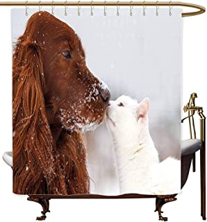 MaryMunger Shower Curtain with Hooks Winter Irish Setter and Cute White Cat in Snow Playing Together Friendship Love Adornment Single stall Shower Curtain W48x84L