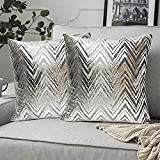 FRECINQ Fundas Cojines 45x45cm Cojines Sofa 2 Piezas Funda de Almohada Style Geométrica para el Sofa Sillas Jardín Decoración Coche Sala de Estar(plata #2)
