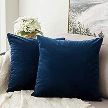 Best 24x24 velvet pillow cover Reviews
