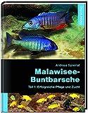 *Malawisee-Buntbarsche, Teil 1: Erfolgreiche Pflege und Zucht