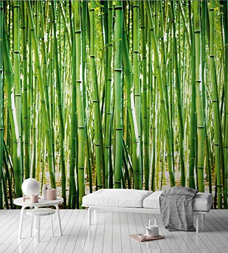Grandeco Bambus Wandbild Fototapete A36901