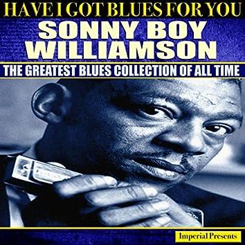 Sonny Boy Williamson (Have I Got Blues For You)