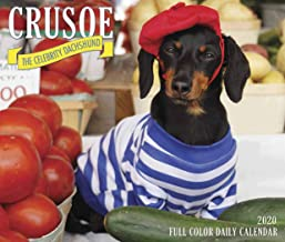 Crusoe the Celebrity Dachshund 2020 Box Calendar (Dog Breed Calendar)