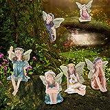 FADACAI 6 figuras de hada de flores en miniatura con alas de hadas, accesorios de jardín para casa de muñecas y decoración de jardín viene con caja