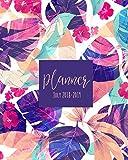 Planner July 2018-2019: Student Planner, College Planner, Calendar Schedule Organizer and Journal Notebook (July 2018 - July 2019): Volume 5