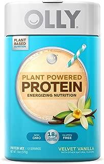OLLY Plant Powered Protein, Protein Powder, 13 oz (12 Servings), Velvet Vanilla, 18g Plant Protein, Vegan