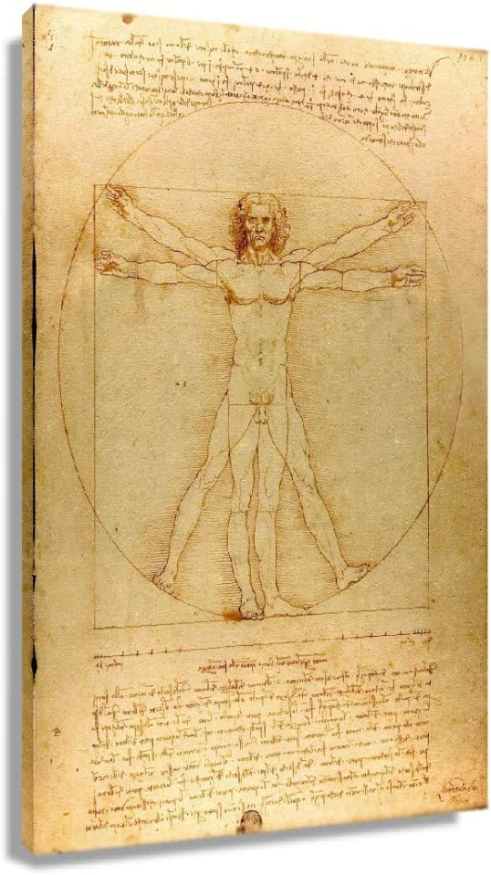 Wall Leonardo Da Vinci Vitruvian Man Poster Painting Vintage Prints Pictures Hd Canvas Artwork for Office Painting Decor Vertical Art (12x18inch(30x45cm),Unframed)