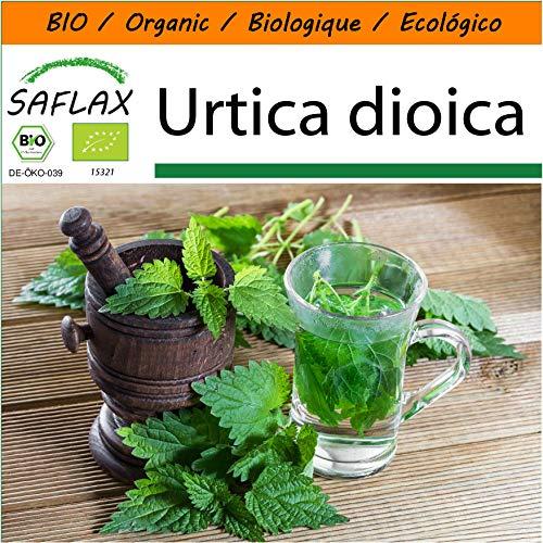 SAFLAX - Garden in the Bag - BIO - Brennnessel - 2000 Samen - Mit Anzuchtsubstrat im praktischen, selbst aufstellenden Beutel - Urtica dioica