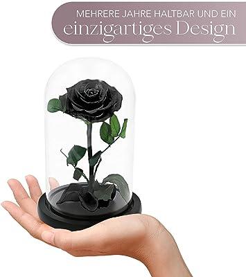 TRIPLE K Rosa en vaso de cristal, regalo de cumpleaños, día de San Valentín, boda, compromiso, 3 años, incluye tarjeta de felicitación, color negro