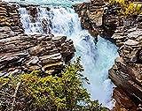 Paisaje DIY Jigsaw Puzzle, The Athabasca Falls en el Parque Nacional Jasper Canadian Rockies Rompecabezas de madera para adultos 500 piezas, los mejores juegos familiares de descompresión para niños