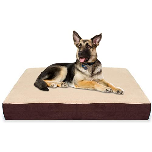 German Shepherd Dog Beds Amazoncom
