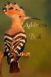 Address book: address book with tabs.address book with alphabetical tabs.address book for men and women. to Keep and Track...