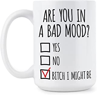 Are You In A Bad Mood Coffee Mug Bad Mood Mug Funny Office Coffee Cup Bitch I Might Be Cups