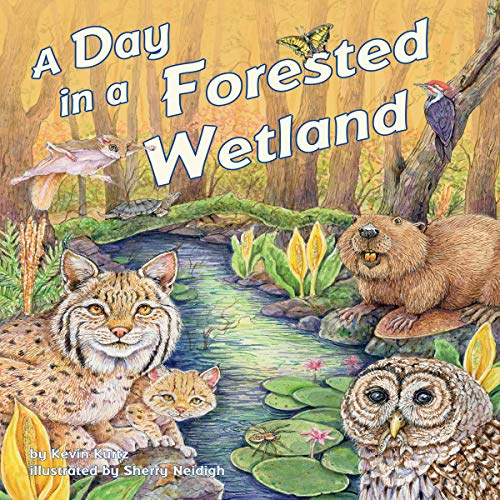 A Day in a Forested Wetland copertina
