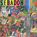 Songtexte von Sebadoh - Smash Your Head on the Punk Rock