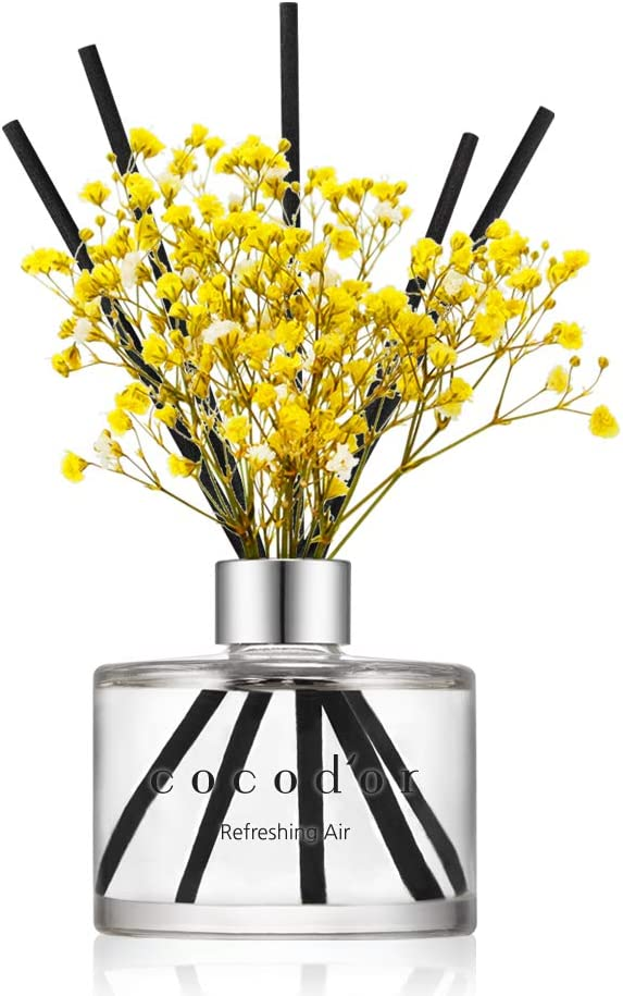 Cocodor Preserved Real Online limited product Flower Reed High quality new Air 6 Refreshing Diffuser
