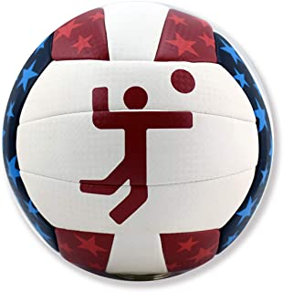 Micro Sport Volleyball with Official United States Olympics Graphics