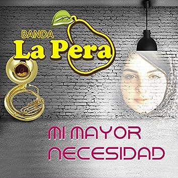 Mi Mayor Necesidad