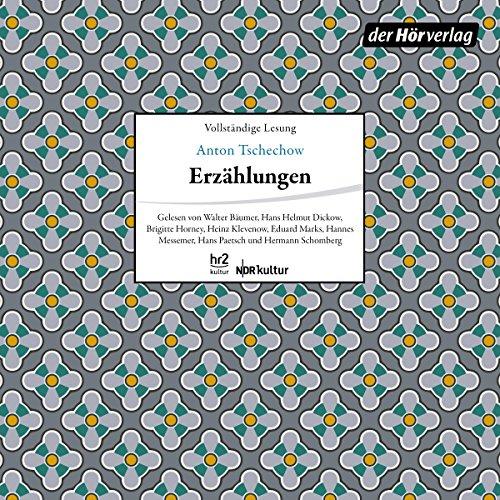 Couverture de Erzählungen: Die Fürstin / Grischa / Der Student / Rothschilds Geige / Seelchen / Der Roman einer Baßgeige / Drei Skizzen