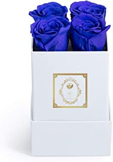 Fleur Magique | Preserved Roses Small Square Arrangement Classic Box (Royal Blue, Classic White Box)