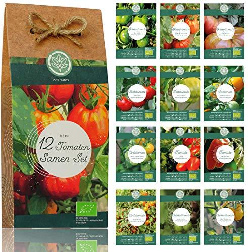 Bio Tomaten Samen Set – 12 Sorten samenfestes Tomaten Saatgut. Bunte und alte Tomatensamen Sorten - ideal für Garten, Balkon und Hochbeet. Perfektes Geschenk Set.