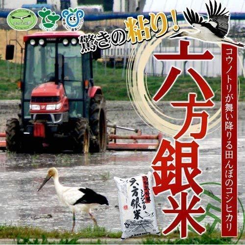 六方銀米こしひかり白米5kg令和元年産特別栽培米コウノトリ舞い降りるお米常温除湿乾燥兵庫県産