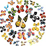40 Pieces Magic Flying Butterflies Wind up Fairy Butterfly in The Book Romantic Rubber Band Powered Butterfly Toys for Birthday Anniversary Wedding Christmas Surprise