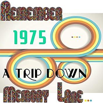 Remember 1975: A Trip Down Memory Lane...