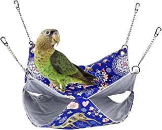 Best parrot in bed Reviews